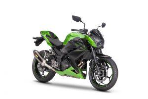 Kawasaki Z 300 Performance